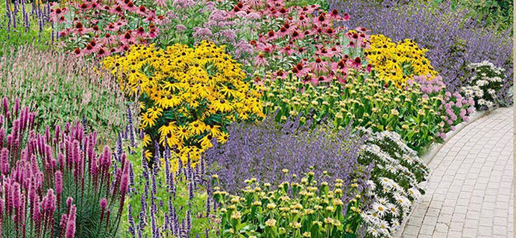 Två färdiga rabatter för din trädgård