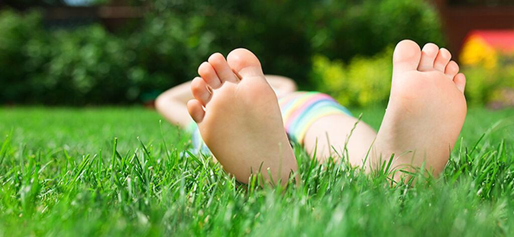 Sköt om din gräsmatta – året om