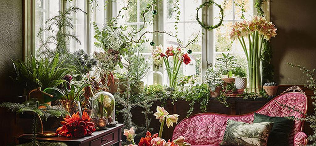 Adventspynta med växter