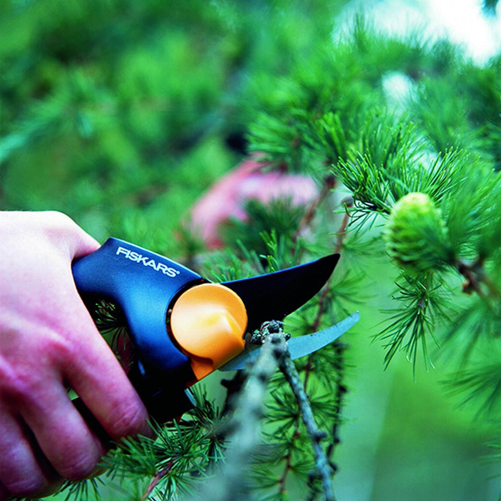 Sju sätt att förbereda trädgården inför vintern