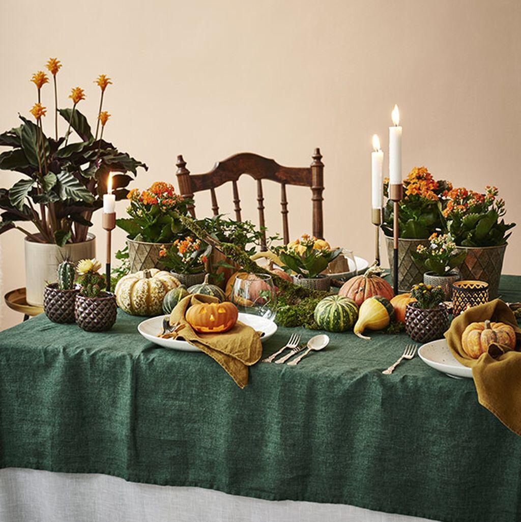 Duka till halloweenfest med blommor och pumpor