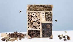 Bygg eget insektshotell – i sju enkla steg