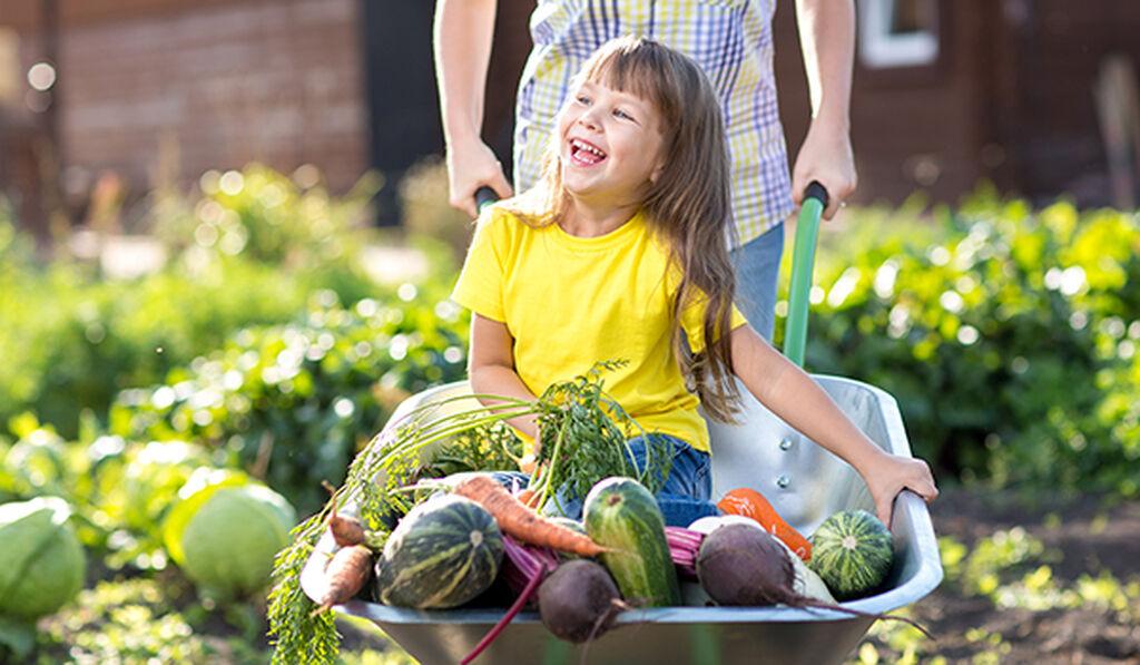 Barnens egen odling