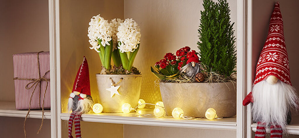 Gör din egen julgrupp med blommor