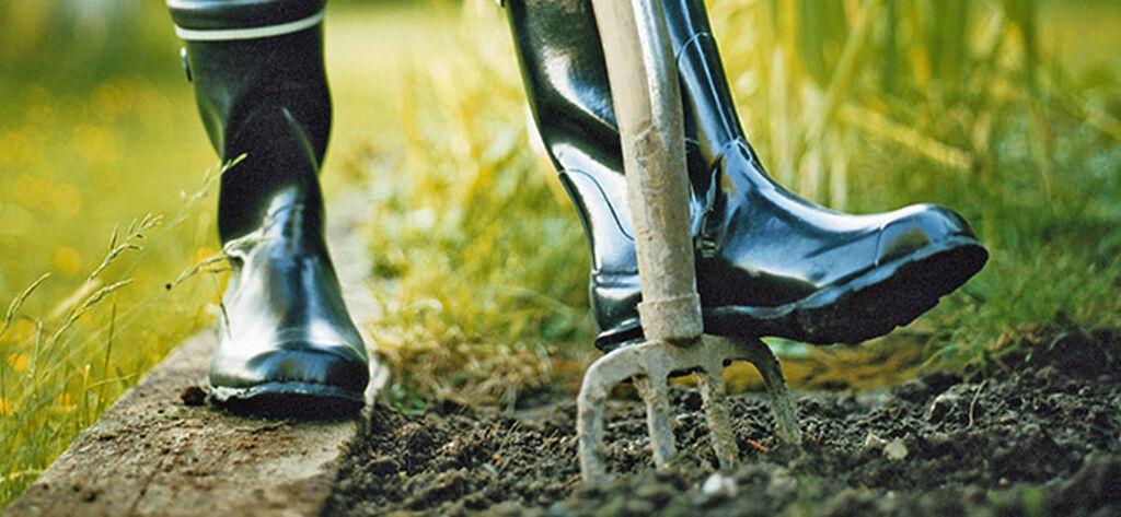 Allt om trädgårdsredskap