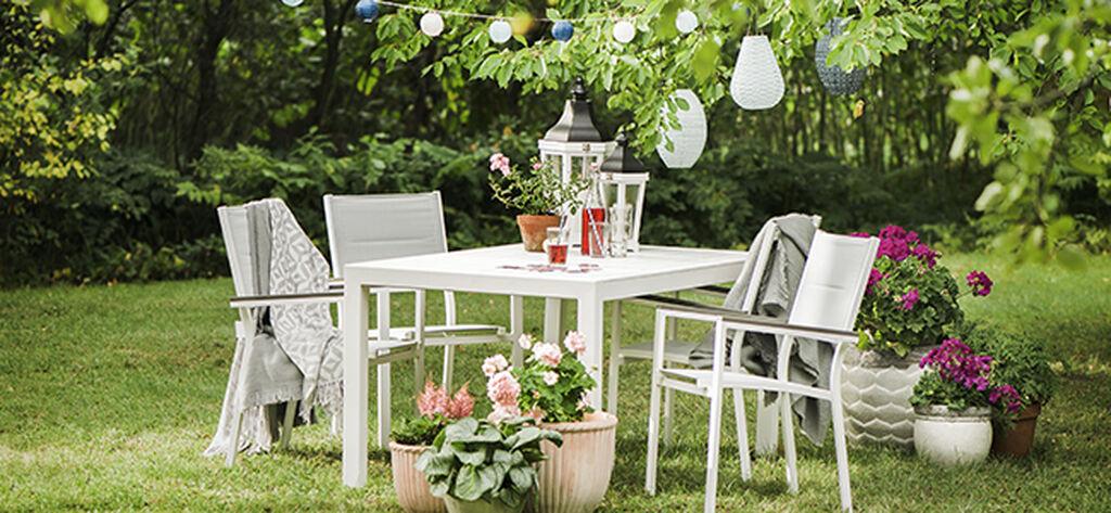 Augusti – fantastiska trädgård