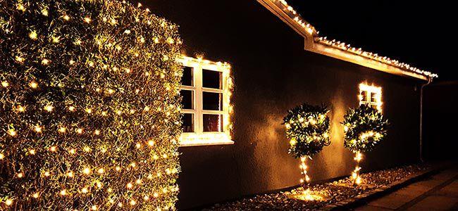Dekorera trädgården med ljusslingor | Plantagen