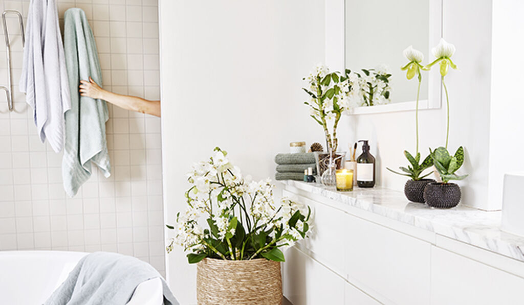 Fräscha upp badrummet
