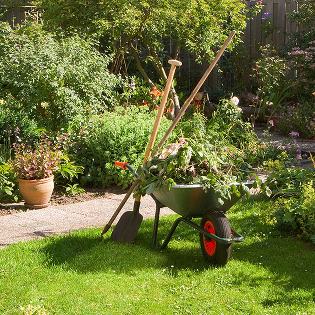 Juni - låt dig hänföras av trädgården