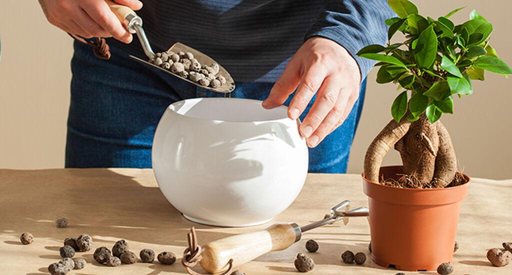 Dränering och luftig jord – med lecakulor