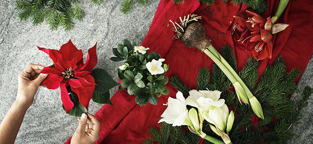 Gör julpynt av blommor
