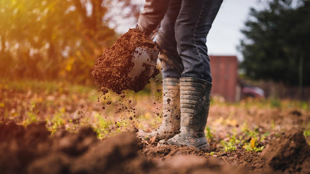 Få en raketstart i trädgården i vår – förbered din jord redan i höst