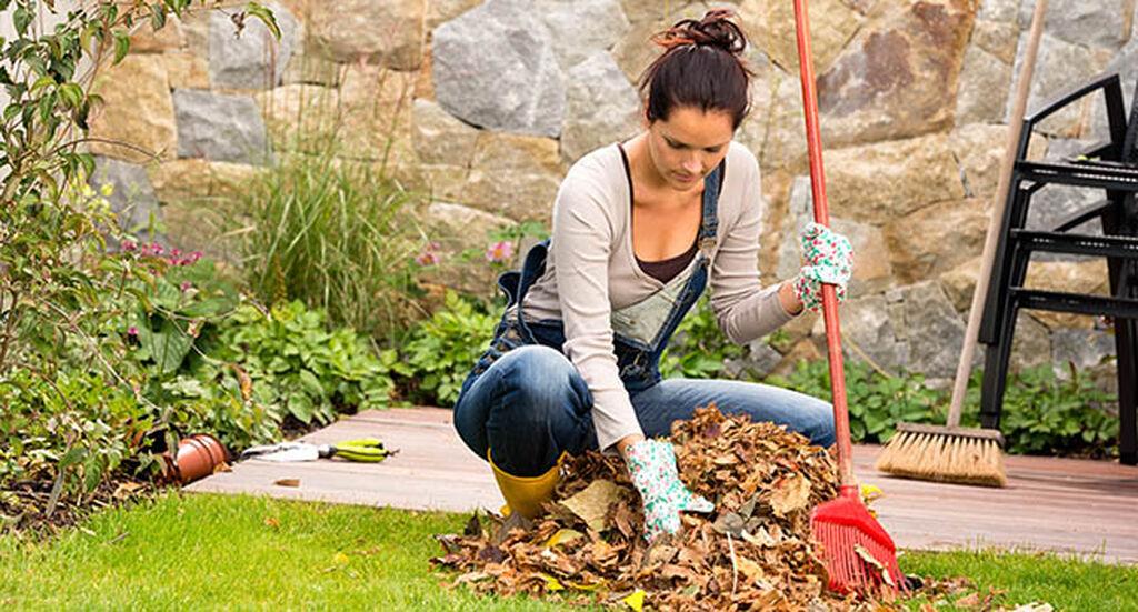 Vårstäda i trädgården