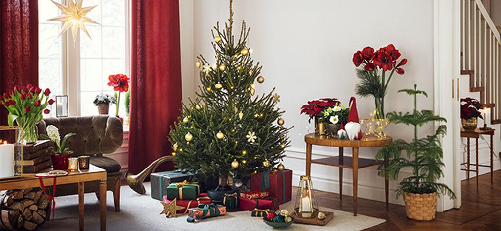 December – julstämning både inne och ute