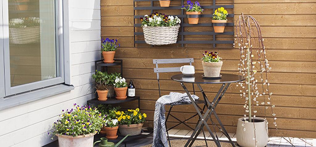 Pynta vårentrén med växter och dekorationer