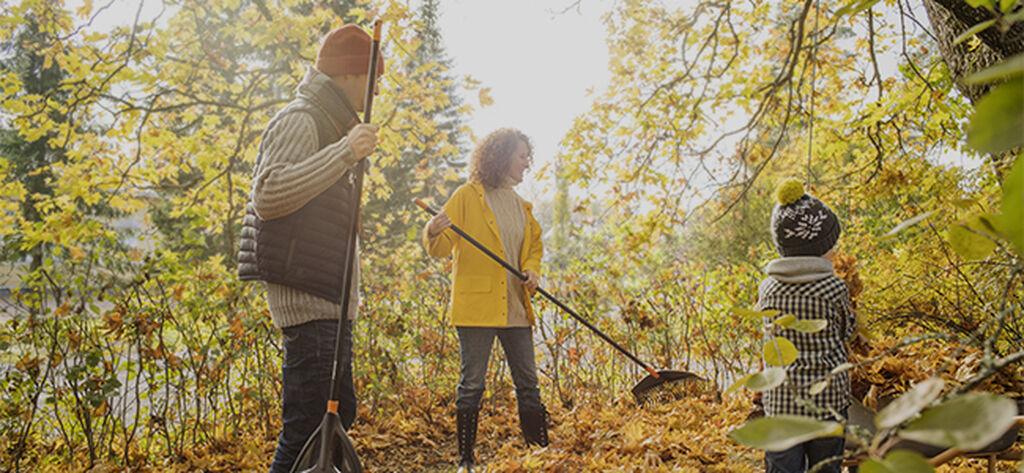 Oktober – klar luft och mustiga färger