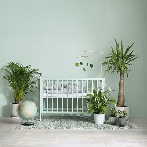 gröna växter inredning