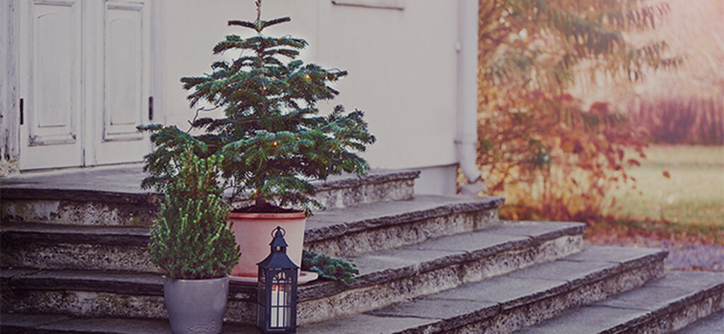 November – tid för lugn och ro