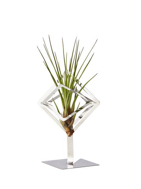 Airplants-hållare Sam, Höjd 15.5 cm, Silver