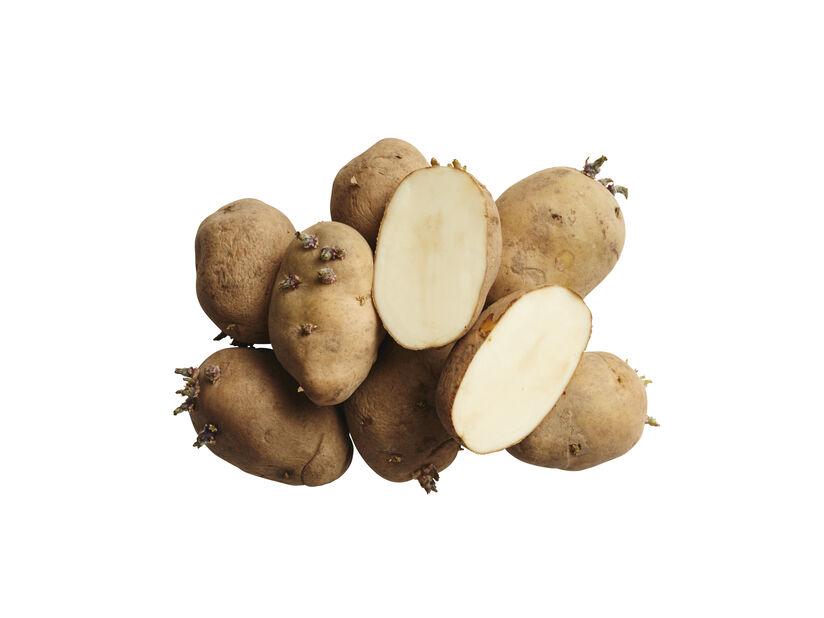 Sättpotatis 'Maris Bard', 3 kg