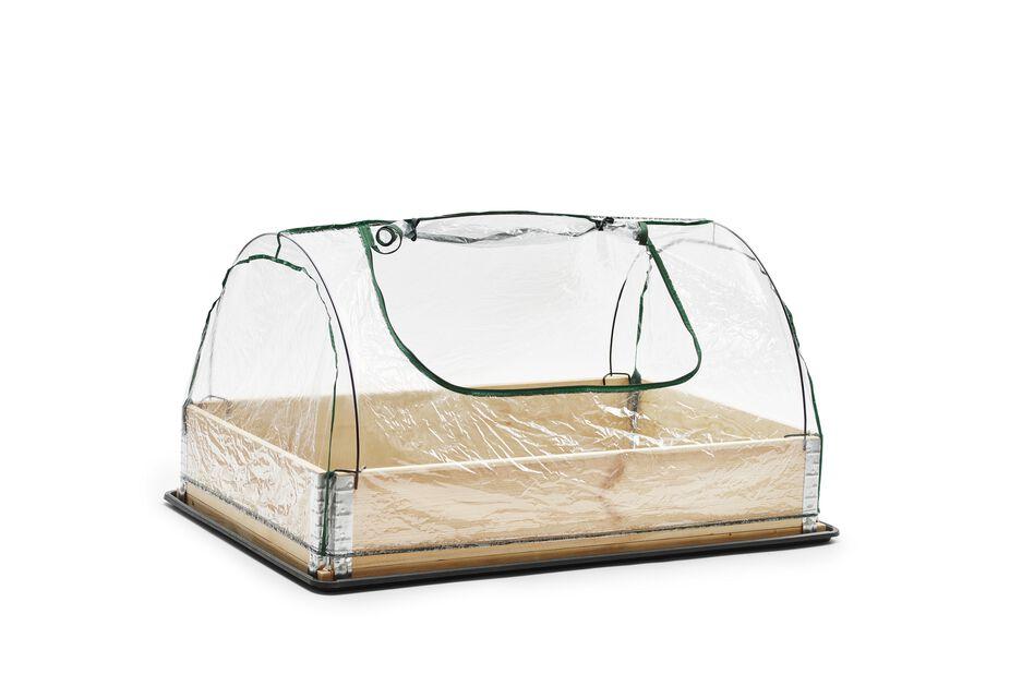 Växthus för pallkrage, Transparent