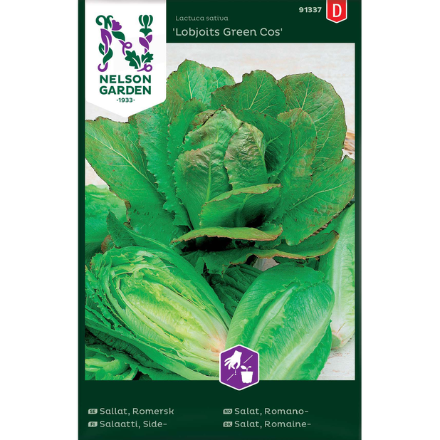 Romansallat 'Lobjoits Green Cos', Flerfärgad