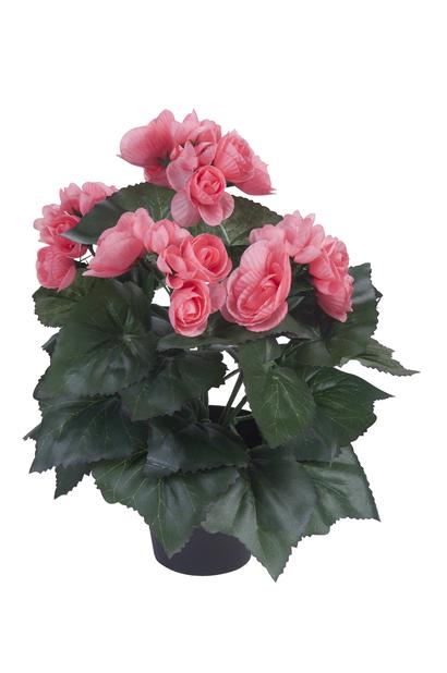 Begonia konstgjord, Höjd 32 cm, Flera färger