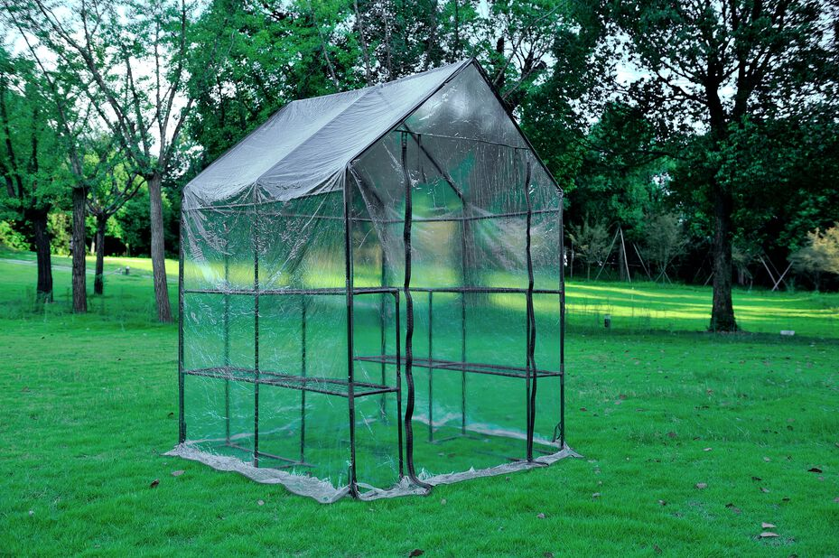 Växthus flyttbart, Höjd 195 cm, Transparent