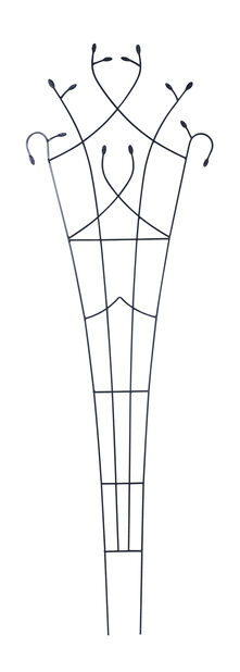 Spaljé Solfjäder Löv, 203x66 cm