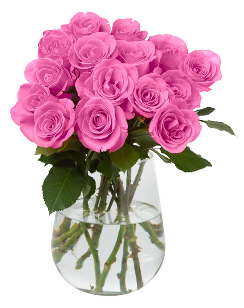 Rosor 10 pack 40 cm Pink