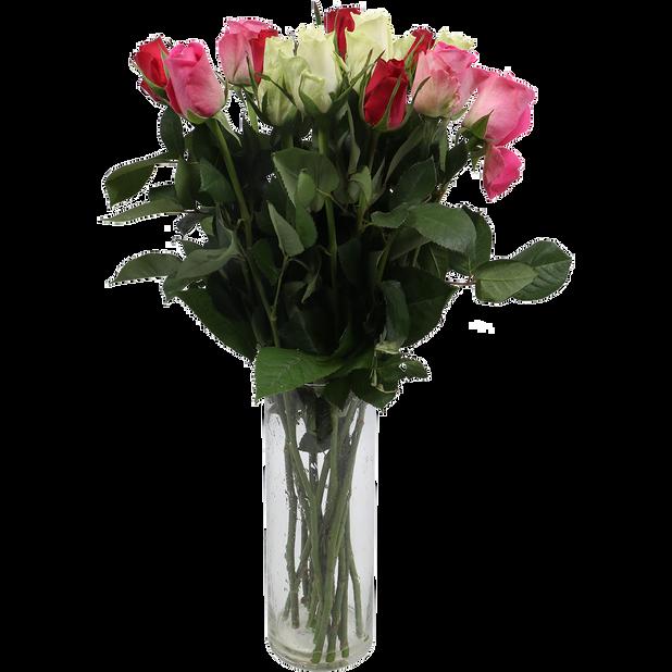 Rosor, Höjd 50 cm, Flerfärgad