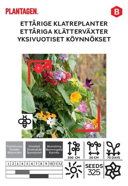 Ettåriga klätterväxter
