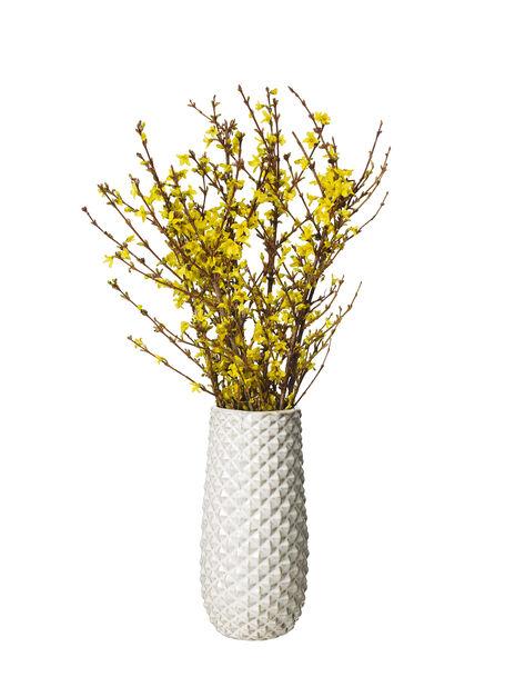 Vårblommande grenar , Höjd 60 cm, Flera färger