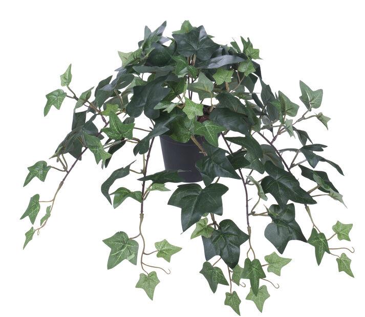 Murgröna i kruka H22 cm, konstgjord