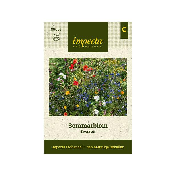 Sommarblom 'Biväxter', Flerfärgad