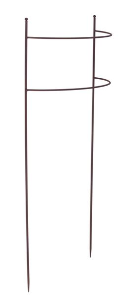 Plantstöd Böjd, Höjd 80 cm, Rost