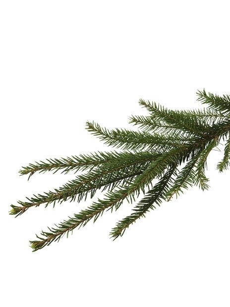 Julgran, Höjd 100-140 cm, Grön