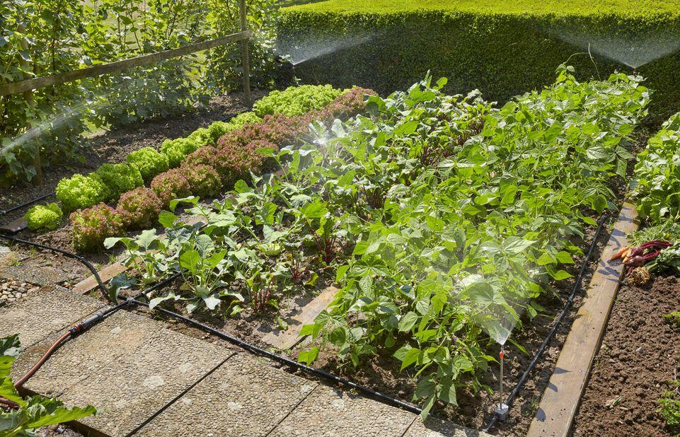 Micro-Drip-System Startpaket för planterade ytor Gardena