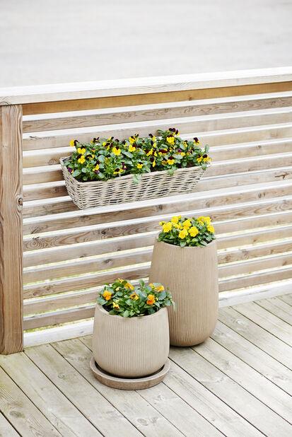 Balkonglåda med hållare, Längd 61 cm, Grå