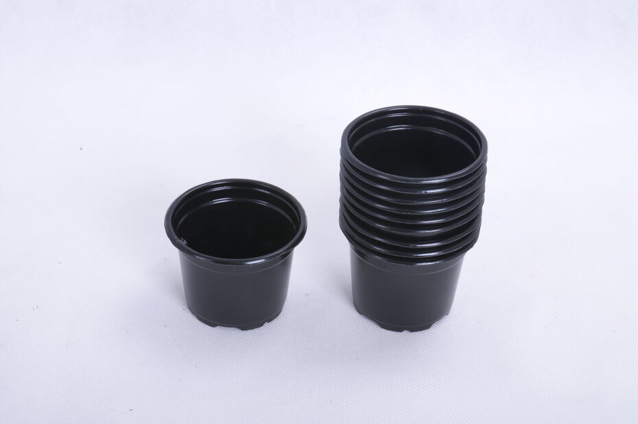 Plastkruka 10-pack 8 cm rund svart
