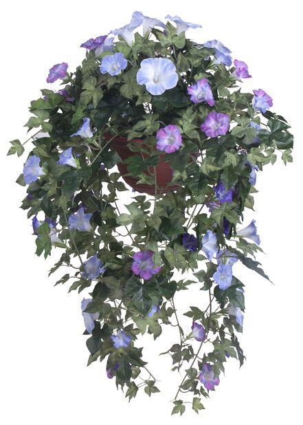 Purpurvinda i ampel konstgjord, Höjd 100 cm, Blå