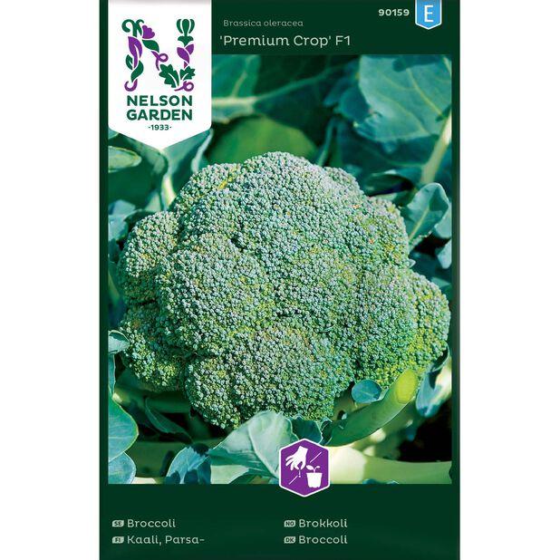 Broccoli 'Premium Crop' F1, Flerfärgad