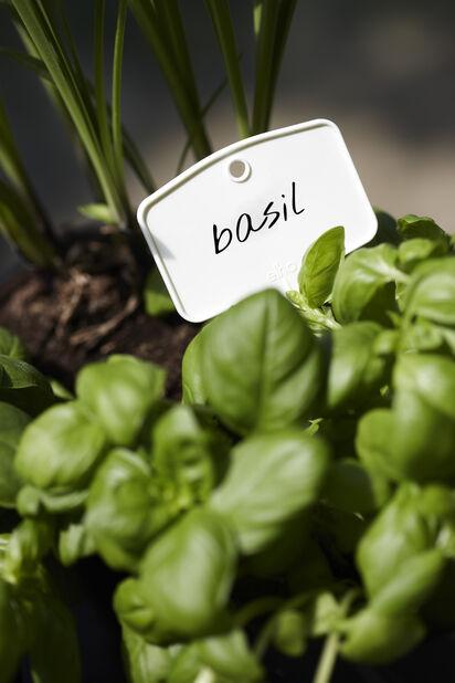 Plantetiketter Green Basics M 5-pack, 5-pack, Vit