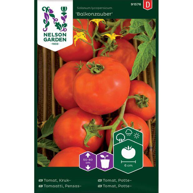 Tomat, Vanlig 'Balkonzauber', Flerfärgad