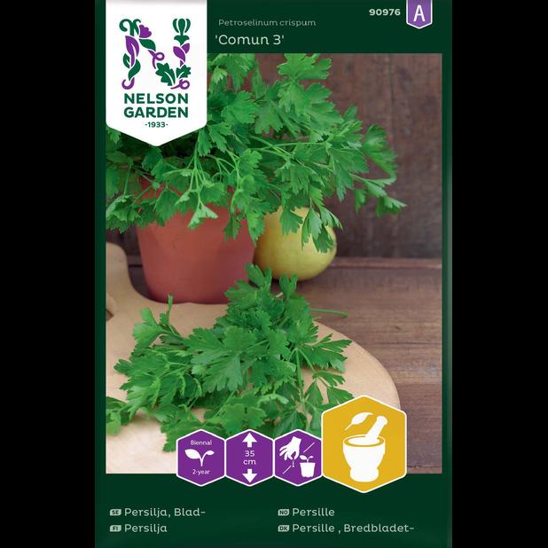 Slätbladig persilja 'Comun 3', Flerfärgad
