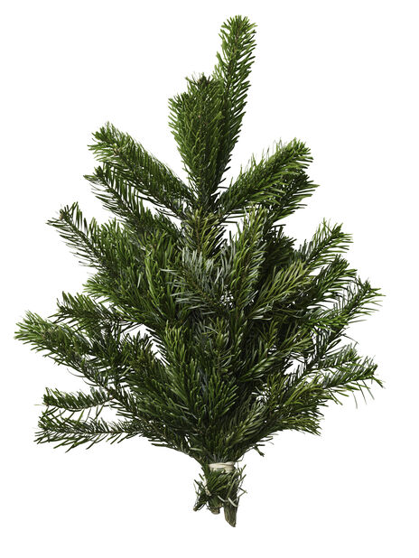 Granbukett kungsgran, Höjd 40 cm, Grön
