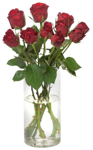Roses 10 pack 40 cm Red