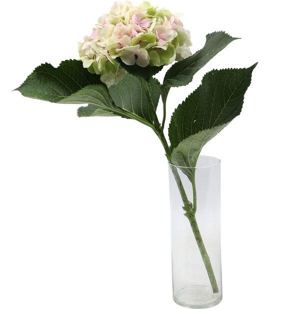 Hortensia, Höjd 50 cm, Flerfärgad