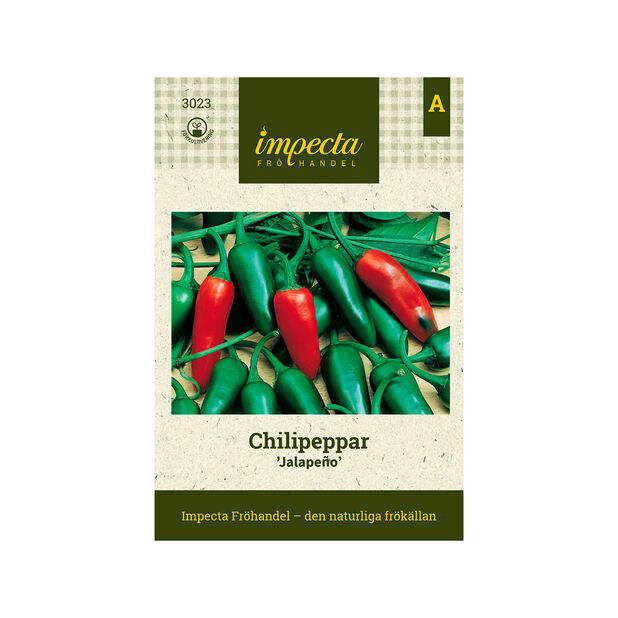 Chilipeppar 'Jalapeño', Röd