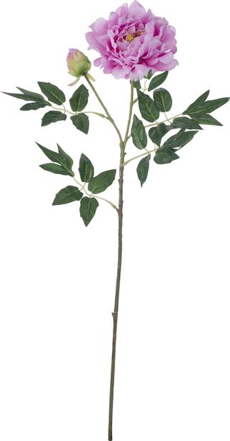 Pion konstgjord, Höjd 61 cm, Vit